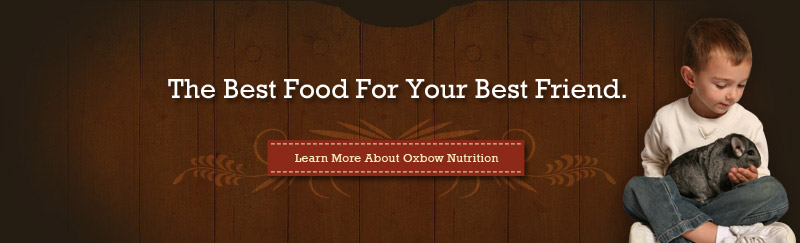 Learn More About Oxbow Nutrition